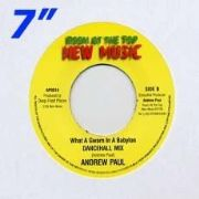 WHAT A GWARN IN A BABYLON [Dancehall Mix] / DUB. Artist: Andrew Paul. Label: Room At The Top.